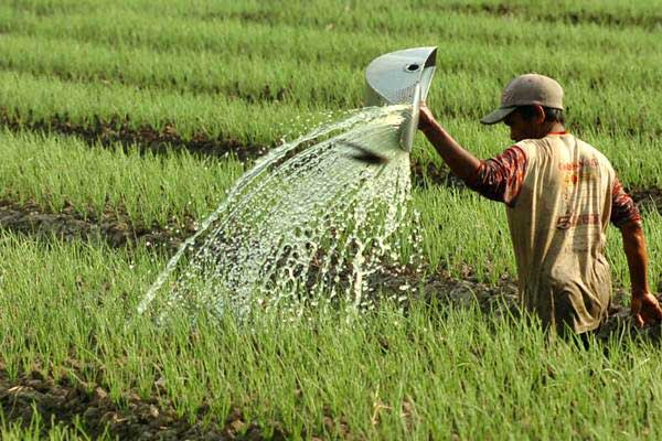 Buruh tani menyiram tanaman bawang merah di Tegal, Jawa Tengah, Rabu (2/8). - ANTARA/Oky Lukmansyah