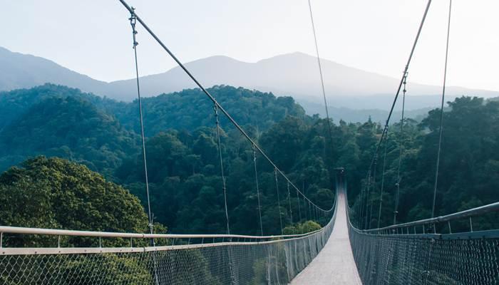 Jembata Situ Gunung TN Gunung Gede Pangrango - situgunungbridge.com