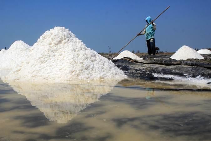 Petambak memanen garam di desa Tanjakan, Krangkeng, Indramayu, Jawa Barat, Rabu (10/7/2019). - ANTARA/Dedhez Anggara