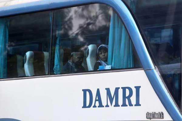 Bus Damri. - Bisnis.com