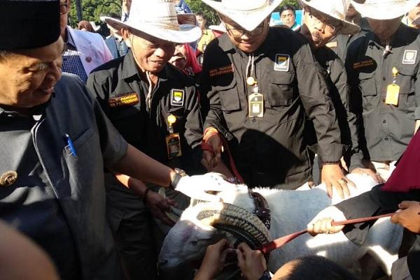 Pelepasan tim Satgas Pemeriksa Kesehatan Hewan Kurban - Bisnis/Dea Andriyawan