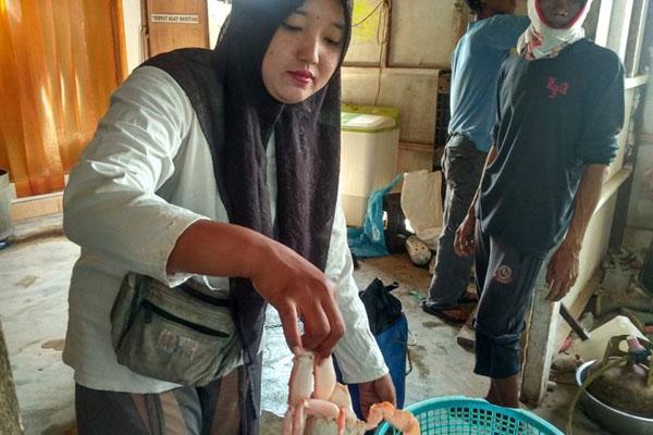 Seorang pedagang memperlihatkan salah satu jenis rajungan segar di pelelangan ikan Muara Gading Mas, Labuhan Maringgai, Lampung Timur, Provinsi Lampung, pada Selasa (30/07/2019). - Antara/Ruth Intan