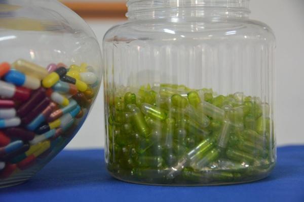 Cangkang kapsul - ristekdikti.go.id