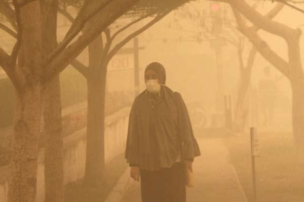 Kabut asap. - antara