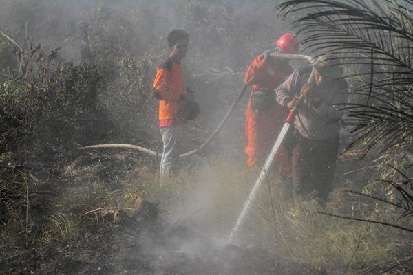 Ilustrasi-Petugas Kepolisian bersama Manggala Agni menyemprotkan air ke lahan gambut yang terbakar di Desa Parit Baru, Kampar, Riau, Kamis (11/07/2019). Panasnya cuaca dan kencangnya angin membuat kebakaran cepat meluas sehingga menyulitkan petugas untuk memadamkan kebakaran lahan gambut tersebut. - ANTARA / Rony Muharrman.