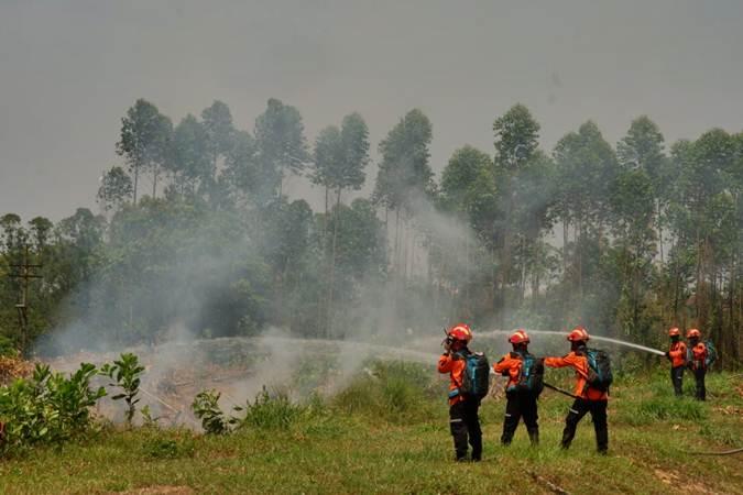 Personel Tim Reaksi Cepat (TRC) unit forestry Asia Pulp & Paper (APP) Sinar Mas, PT Arara Abadi saat melakukan simulasi pemadaman di Perawang, Riau, Kamis (25/7/2019). - Bisnis/Nurul Hidayat