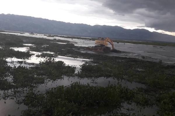 Danau Limboto di Provinsi Gorontalo dipenuhi enceng gondok. - Bisnis Indonesia/Yanita Petriella