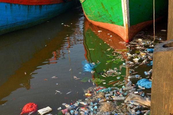 Ilustrasi sungai dalam keadaan kritis. - Antara