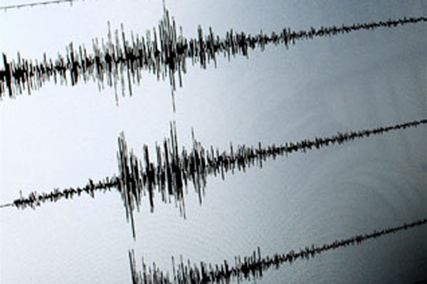Grafik hasil pencatatan seisymometer/seismograf, alat pencatat besaran gempa bumi. - Reuters