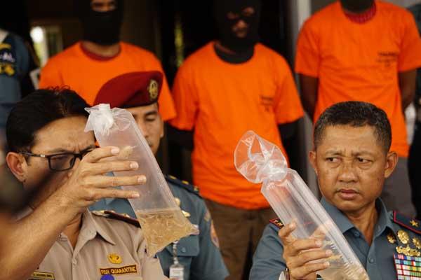 Komandan Pangkalan Utama TNI AL (Danlantamal) IV Laksma TNI Arsyad Abdullah (kanan) dan Kepala BKIPM Kota Batam, A Agung Gede Eka Susila (kiri) ketika menunjukan baby lonster yang akan diselundupkan ke Singapura dalam ekspos yang dilakukan di Mako Lanal Batam pada Senin (12/8) - Bisnis/Bobi Bani.