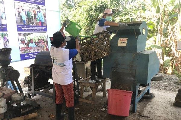 Proses pencacahan sampah yang telah dipeyeumisasi sebelum dijadikan pelet di Tempat Olah Sampah Setempat (TOSS) Werdhi Guna di Klungkung, Bali, Kamis (27/6/2019). - Bisnis/Annisa Margrit