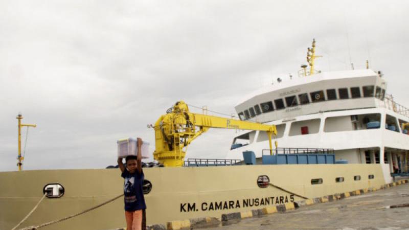 Kapal Ternak KM Cemara Nusantara 5 berlabuh di pelabuhan Tenau Kupang, NTT. - Antara/Kornelis Kaha
