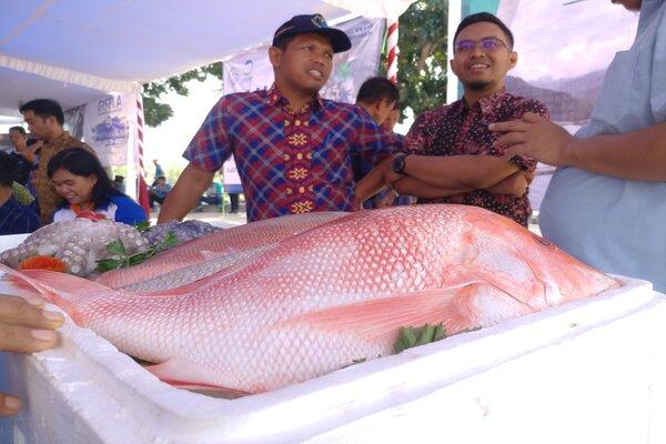 Ikan Kakap Merah dan Gurita, jadi komoditas ekspor unggulan dari Kabupaten Natuna. - Bisnis/Bobi Bani.