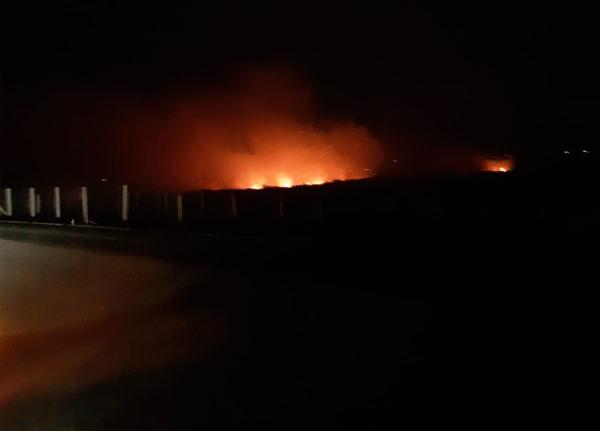 Api berkobar di lahan sekitar ruas tol Kayuagung - Palembang. BISNIS - Rospesta Sitorus