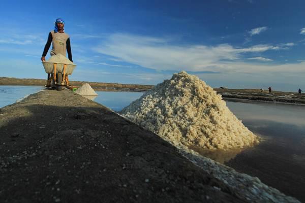 Ilustrasi-Petani memanen garam - ANTARA/Dedhez Anggara