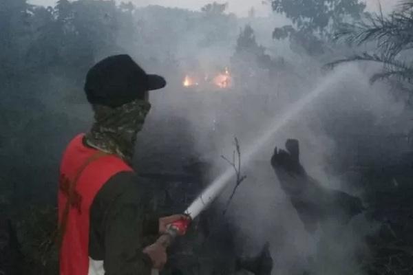Satgas Gabungan Karhutla berupaya memadamkan kebakaran hutan dan lahan di Kelurahan Sagatani, Kecamatan Singkawang Selatan, Kalbar. - Antara