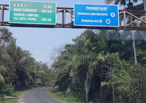 Jalan Lintas Barat Sumatra di Kabupaten Kaur, Bengkulu. BISNIS - Rivki Maulana