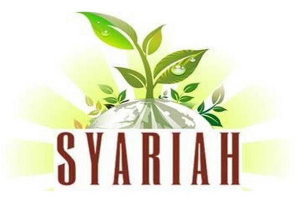 Ilustrasi lembaga keuangan syariah. - Istimewa