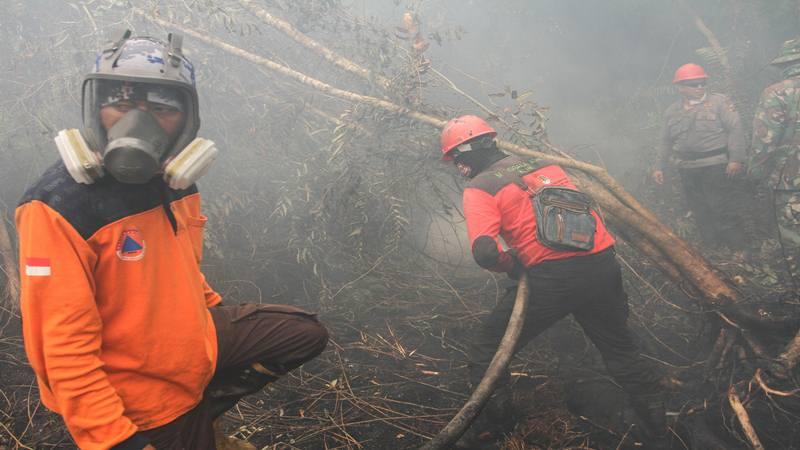 Satgas Karhutla Riau melakukan pemadaman kebakaran lahan gambut di Desa Rimbo Panjang, Kabupaten Kampar, Riau, Senin (16/9/2019). Kebakaran hutan dan lahan (karhutla) yang masih terjadi membuat sejumlah wilayah di Provinsi Riau terpapar kabut asap. - Antara