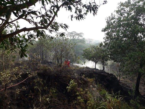 Pertamina EP membantu mengatasi kebakaran hutan dan lahan yang berada di sekitar wilayah operasi perusahaan. - Istimewa