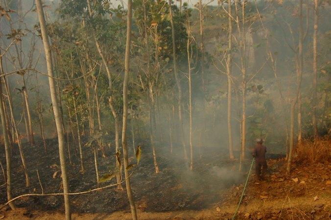 Warga berusaha memadamkan kebakaran bukit di Desa Kalibakung, Kabupaten Tegal, Jawa Tengah, Rabu (4/9/2019).  - ANTARA / Oky Lukmansyah.