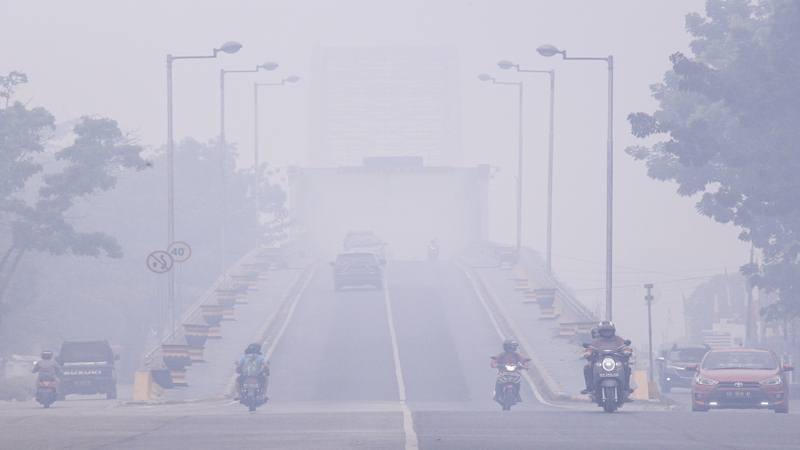 Ilustrasi-Pengendara melintas di Jembatan Kahayan yang diselimuti kabut asap di Palangka Raya, Kalimantan Tengah, Minggu (15/9/2019). Kota Palangka Raya kembali diselimuti kabut asap pekat akibat kebakaran hutan dan lahan di sejumlah daerah di Kalimantan Tengah sehingga menimbulkan aroma yang menyengat dan menggangu aktivitas warga. - Antara