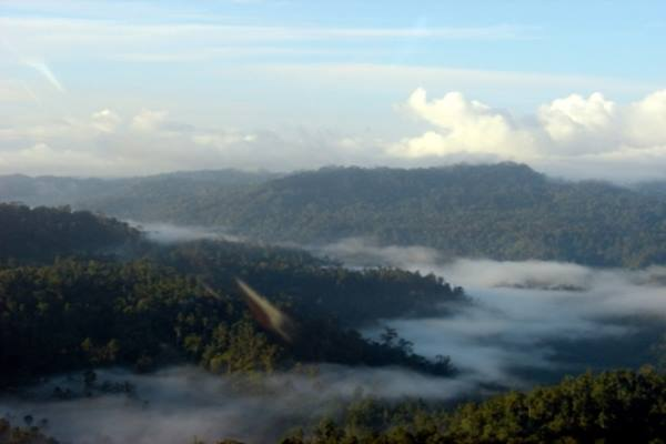 Halmahera berselimutkan hutan - indonesia.travel