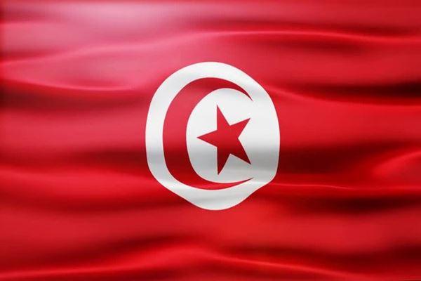 Bendera Tunisia - Istimewa