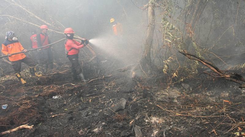 Satgas Karhutla Riau terus berupaya melakukan pemadaman di tengah pekatnya asap kebakaran lahan gambut yang terbakar di Desa Rimbo Panjang, Kabupaten Kampar, Riau, Senin (16/9/2019). - Antara