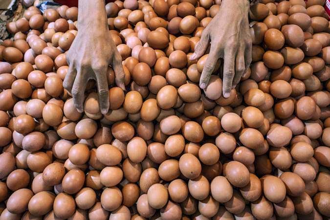 Pedagang merapikan telur di Pasar Senen, Jakarta, Senin (29/4/2019). - ANTARA/Aprillio Akbar
