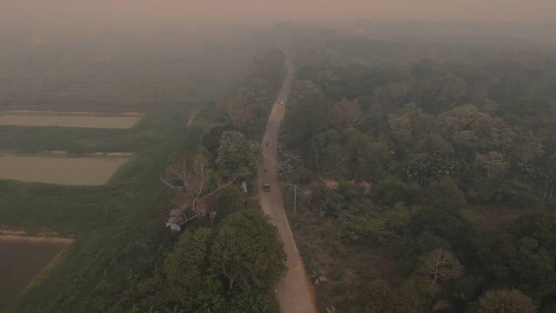 Foto udara Jalan Lintas Jambi-Tanjungjabung Timur yang diselimuti kabut asap karhutla - Antara