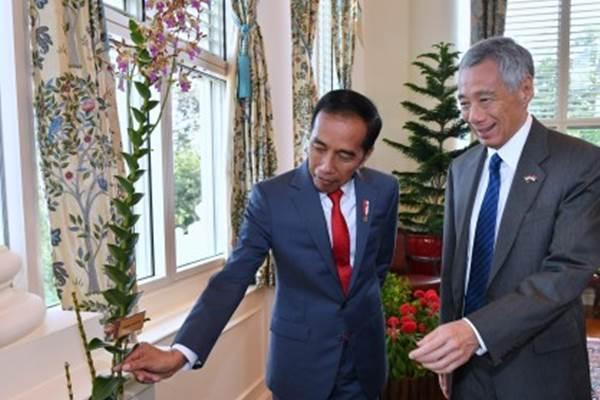 Presiden Joko Widodo (kiri) bersama Perdana Menteri Singapura Lee Hsien Loong mengamati Anggrek Iriana Jokowi di sela-sela kunjungan kerja di The Istana, Singapura, Selasa (8/10/2019). Penamaan anggrek Dendrobium Iriana Jokowi diberikan saat Ibu Negara Iriana menjadi tamu kehormatan di Singapore Botanic Gardens, Singapura pada tahun 2015 lalu. - ANTARA/Biropers/Laily