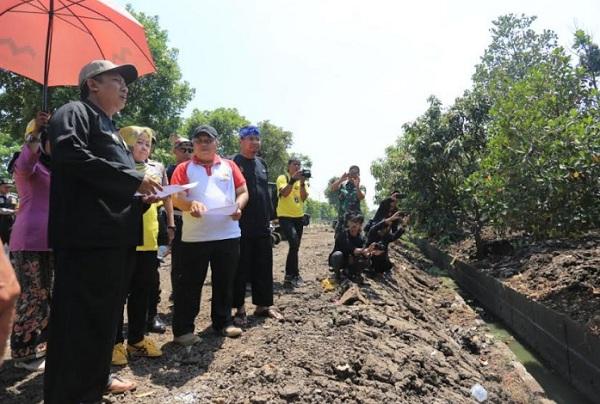 Wakil Wali Kota Bandung Yana Mulyana saat meninjau Kolam Retensi Rancabolang, Rabu (9/10). - Bisnis/Dea Andriyawan