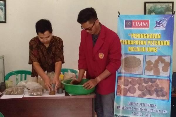 Proses pembuatan urea molases block atau UMB karya dosen UMM - Istimewa