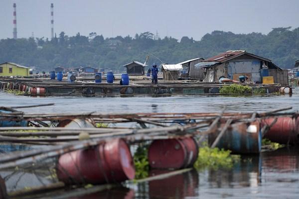 Warga beraktivitas di antara keramba jaring apung di Waduk Jatiluhur, Purwakarta, Jawa Barat, Minggu (16/4). - Antara/Sigid Kurniawan