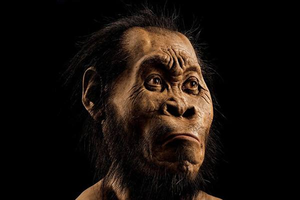 Spesies Homo sapiens - Istimewa