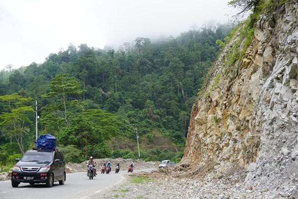 Sejumlah kendaraan melintas di Jalur Trans Sulawesi poros Tawaeli-Toboli di Kawasan Pegunungan Kebun Kopi, Sulawesi Tengah, Minggu (2/6/2019). - ANTARA / Mohamad Hamzah