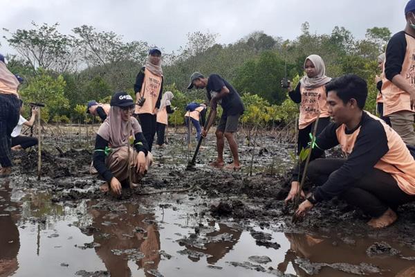 Anggota Korkom Genbi (Generasi Baru Indonesia) Malang tengah menanam mangrove di Pantai Clungup pada kegiatan Bersih Indonesia Genbi Malang 2019, Sabtu 2 November 2019. - Bisnis/Choirul Anam