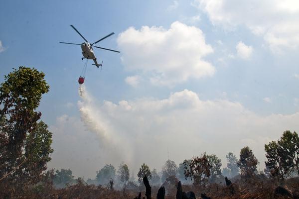 Ilustrasi-Pemadaman kebakaran hutan - Antara/FB Anggoro