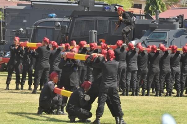 Sejumlah personel Brimob melakukan atraksi pada peringatan HUT ke-74 Korps Brimob Polri di Palu, Sulawesi Tengah, Kamis (14/11/2019). Peringatan HUT ke-74 Korps Brimob Polri yang berlangsung di Mako Brimob Polda Sulawesi Tengah tersebut diisi dengan berbagai kegiatan di antaranya pelaksanaan upacara serta berbagai atraksi. - ANTARA/Mohamad Hamzah