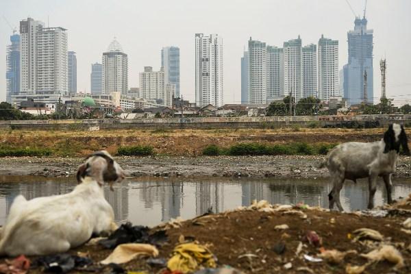 Pemandangan deretan gedung bertingkat di ibu kota terlihat dari kawasan Tanah Abang, Jakarta, Selasa (5/11/2019). Badan Pusat Statistik (BPS) mencatat laju pertumbuhan ekonomi pada kuartal III 2019 tumbuh sebesar 5,02 persen secara tahunan, capaian tersebut lebih rendah dari kuartal II 2019 yang mencapai 5,05 persen. - ANTARA FOTO/Galih Pradipta
