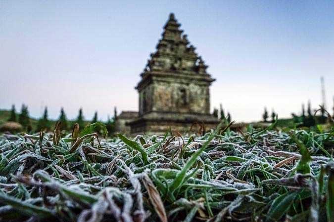 Embun beku yang muncul akibat penurunan suhu hingga minus tujuh derajat celcius menyelimuti kompleks Candi Arjuna, di dataran tinggi Dieng, Banjarnegara, Jawa Tengah, Selasa (25/6/2019). - ANTARA/Idhad Zakaria