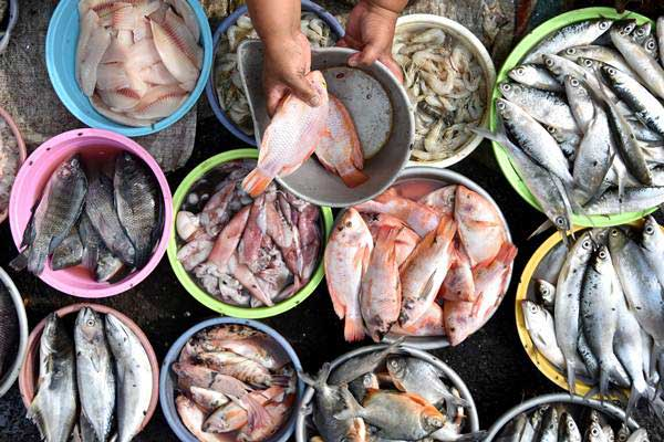 Pedagang memilih ikan untuk ditimbang di Pasar Bandarjo, Ungaran, Kabupaten Semarang, Jawa Tengah,Rabu (11/10). - ANTARA/Aditya Pradana Putra