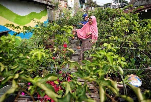 Program urban farming yang digagas Pemkot Bandung - Bisnis/Dea Andriyawan