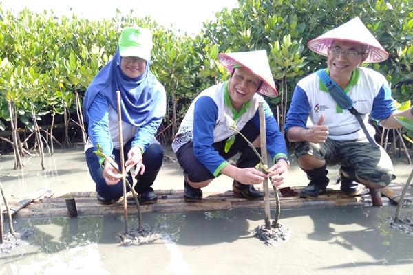 Keterangan foto :General Manager Pertamina MOR IV Iin Febrian (tengah) bersama jajarannya saat melakukan penanaman mangrove di kawasan Tambakrejo Semarang. - Bisnis/