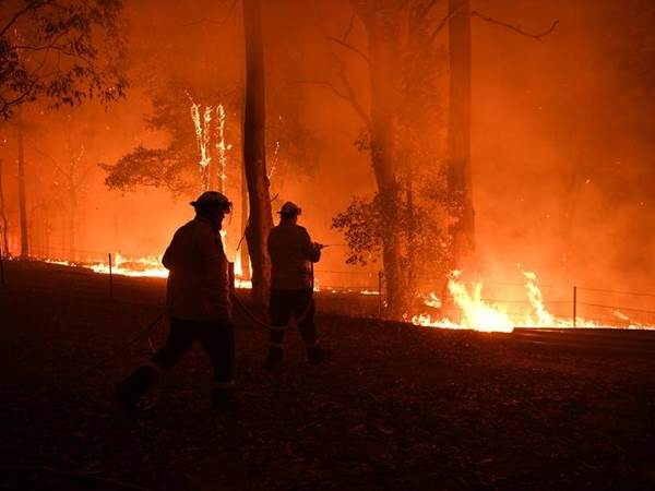 Hutan Australia Kebakaran, Asap Tebal Selimuti Sydney - canberratimes.com.au/Ilustrasi