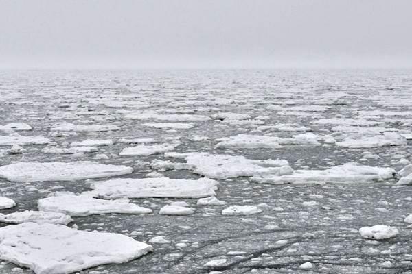 Laut Arktik - Istimewa