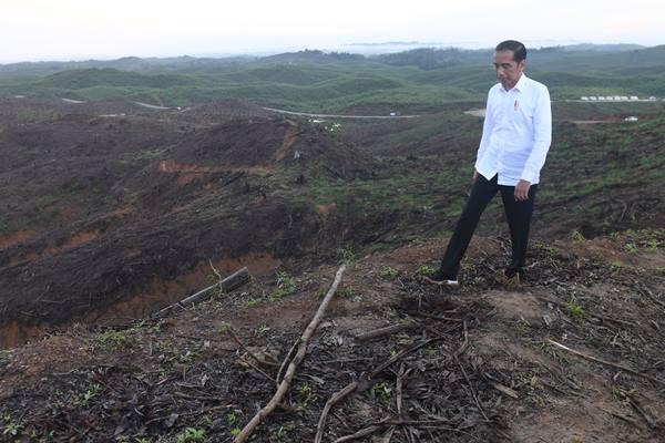 Presiden Joko Widodo meninjau lokasi rencana ibu kota baru di Sepaku, Penajam Paser Utara, Kalimantan Timur, Selasa (17/12/2019).  - Antara