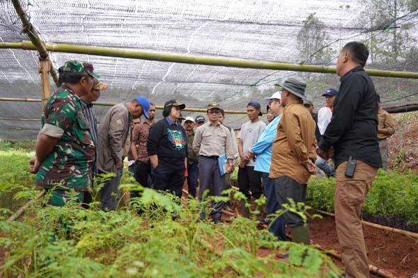 Menteri Lingkungan Hidup dan Kehutanan Siti Nurbaya meninjau kebun bibit di Desa Gunung Kencana, Kabupaten Lebak, Banten, Sabtu petang (11/1/2019). - Istimewa