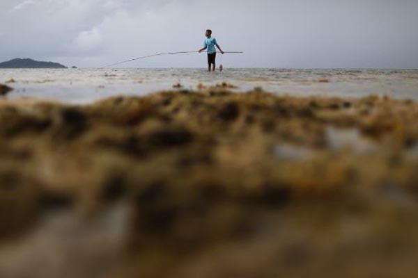 Seorang anak bermain di tepi pantai Pulau Natuna Besar di Provinsi Kepulauan Riau - Reuters
